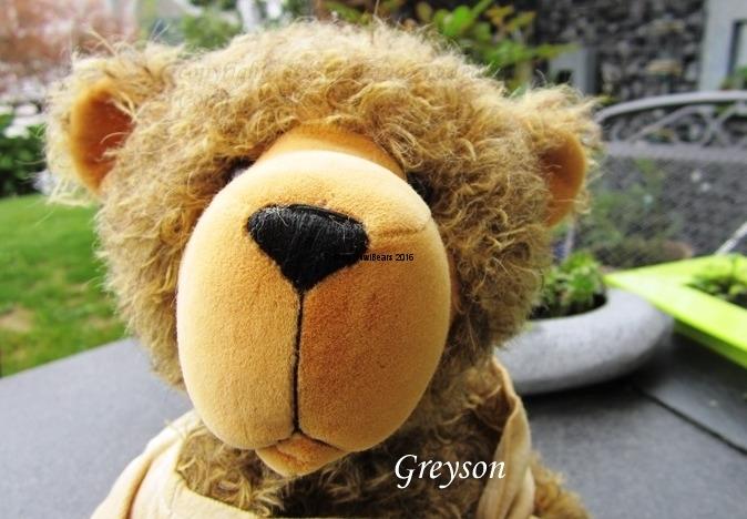 Greyson_2